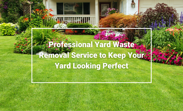Yard Waste Removal Service
